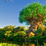 Roteiro de Viagem pra Disney – Dia 6 (Animal Kingdom)